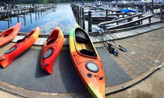 Can't Beat A Day Kayaking!