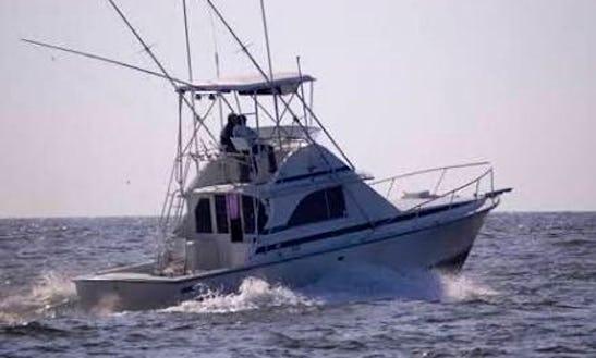 Enjoy Fishing In Cancún, Mexico On 35' Bertram Sport Fisherman