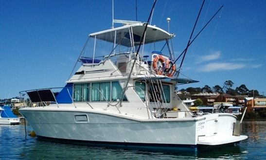 Sport Fisherman Fishing Charters In Merimbula, Australia