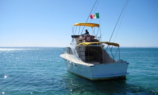 Motor Yacht Rental In Baja California Sur