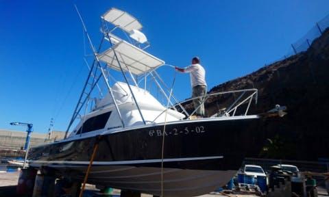 Bertram 31 Sportfishing Yacht Charter in Canary Islands