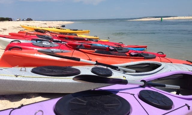 3 Hr. Deluxe Guided Kayak Tour in Southampton