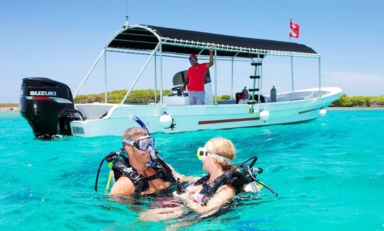 Fun Diving & Padi Courses On The