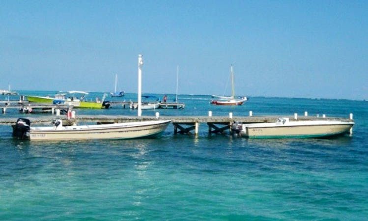 Local Reef Dive Boat Trips for 2 Person in Belize!
