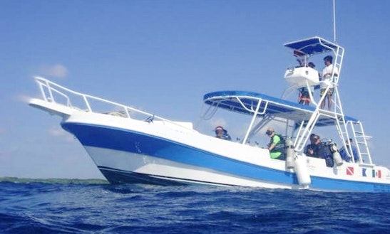 Diving Trips In Mahahual, Mexico