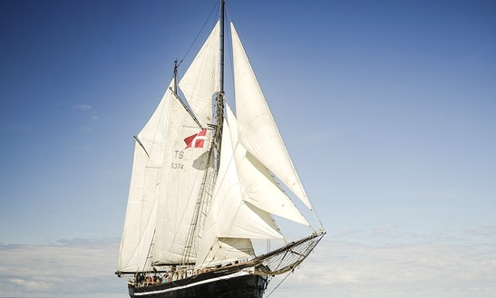 Hawila Sailing Ship Rental In Copenhagen - Kastrup Harbor