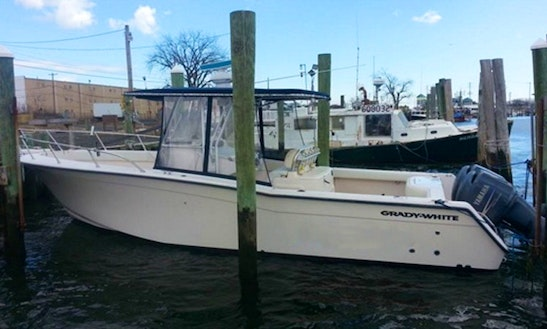 31' Center Console Fishing Boat In Neptune Township, New Jersey United States