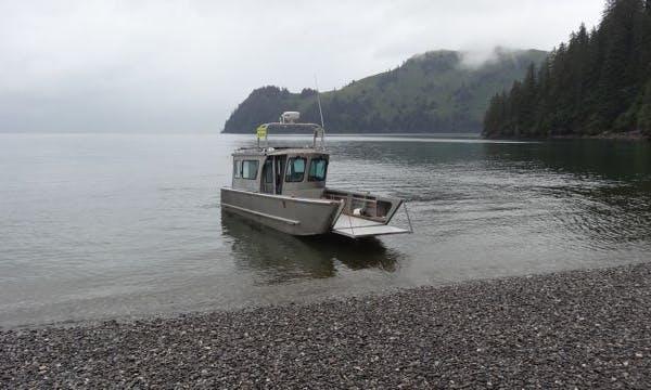 """28' """"Lori Sea"""" Wildlife Tour & Taxi in Seward, Alaska"""