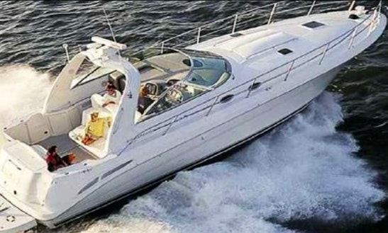 Charter 43' Sea Ray Motor Yacht In Altea, Spain