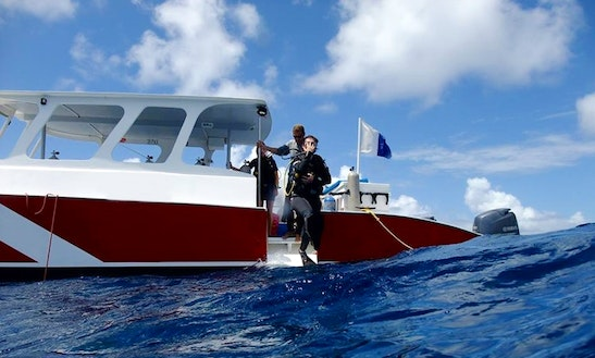 Discover Scuba Diving In Simpson Bay