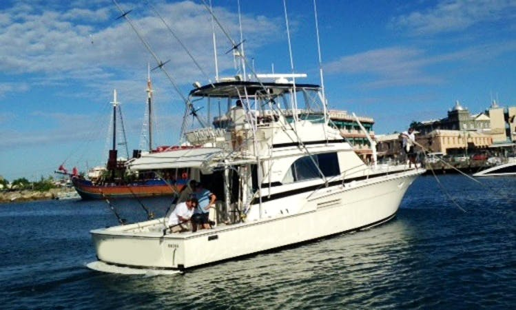 "46ft Bertram ""Shooter"" Luxury Fishing Boat Charters in St Michael, Barbados"