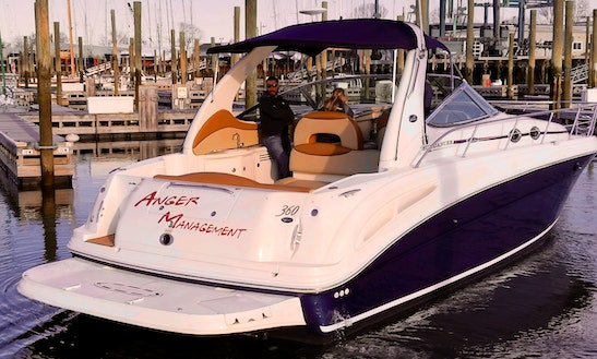 203 Charters, Norwalk's Premier Charter Service Offering Sunset Cruises And Afternoons Of Fun In The Sun!