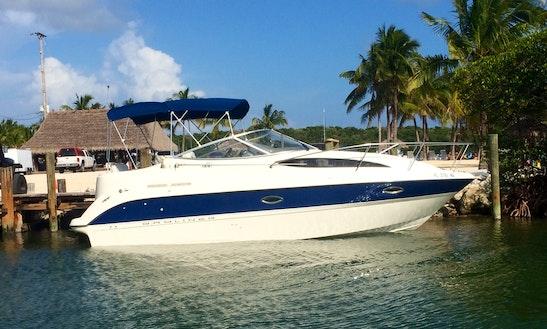 Key Largo Snorkel Or Sunset On 27' Cruiser