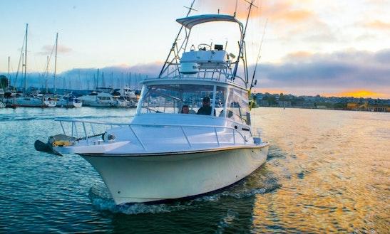30' Henriques Express Motoryacht Rental In San Diego Bay, California