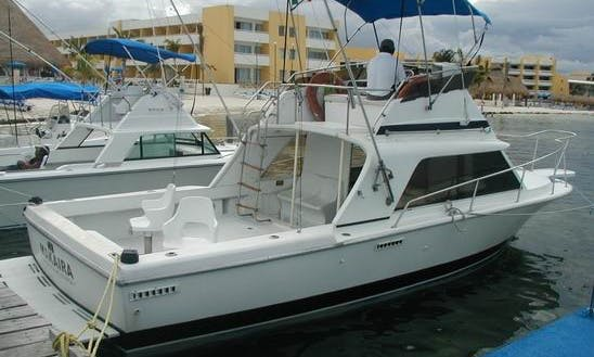 Ideal For Fishing or Trips in Family or Groups in Cancún, Mexico on 31' Makaira Cuddy Cabin