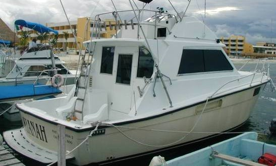 Enjoy On 35' Grand Slam - Kianah Sport Fisherman Fishing Charter And Whale Watching In Cancún, Mexico