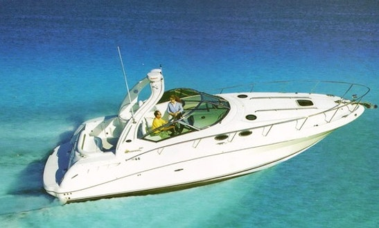 Sundancer Searay 35' Luxury Sport Yacht Charter In Cancún, Mexico
