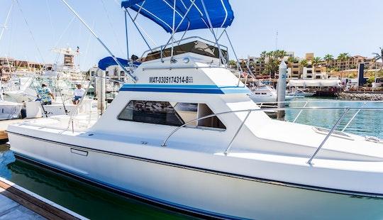 Amazing 28' El Peleador Available For Fishing Charter In Baja California Sur,mexico