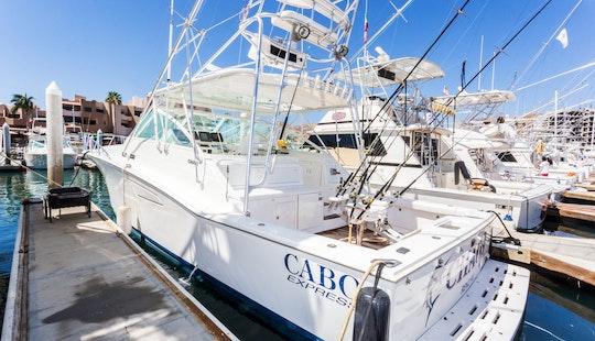 It's Time To Fish In Baja California Sur, Mexico Aboard 45' Sport Fsiherman