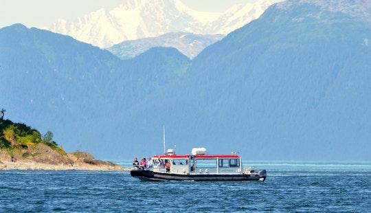 Passenger Boat Whale Watching Trips In Hoonah, Alaska