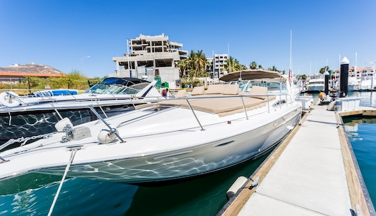 Beautiful Sea Brother 41' Motor Yacht Charter Available In Baja California Sur, Mexico