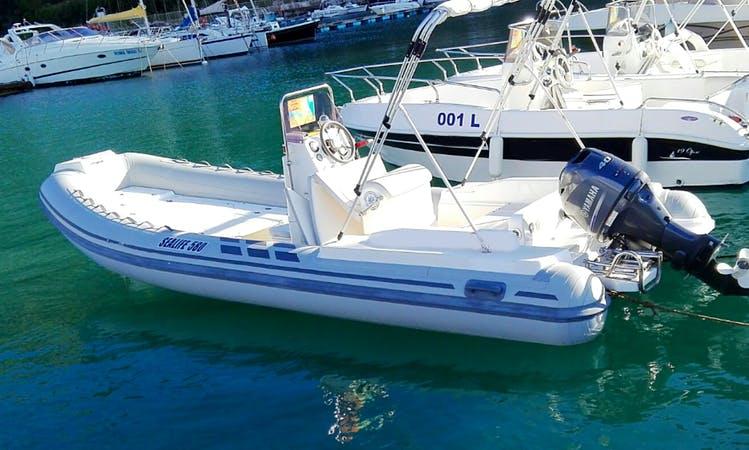 Rent Sealife 580 Rigid Inflatable Boat in Castellammare del Golfo, Italy