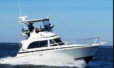 Fishing Charter on 35' Bertram Flybridge Yacht in Destin,Florida
