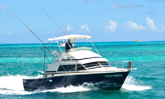 Go Fishing On This 33' Sport Fisherman In Cancún, Mexico
