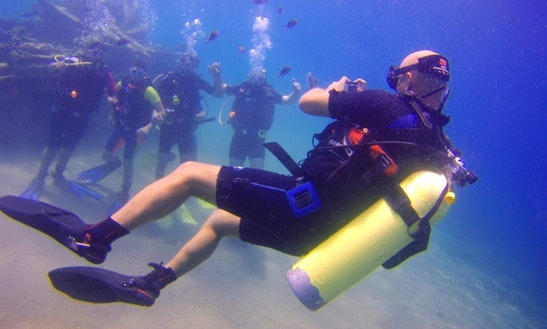 Explore The Amazing Underwater World In Aqaba, Jordan