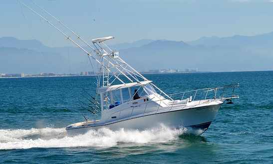 Pacifica 36 Sport Fisherman Fishing Charter In Puerto Vallarta, Mexico