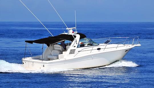 Sea Ray 37 Motor Yacht Charter In Puerto Vallarta, Mexico