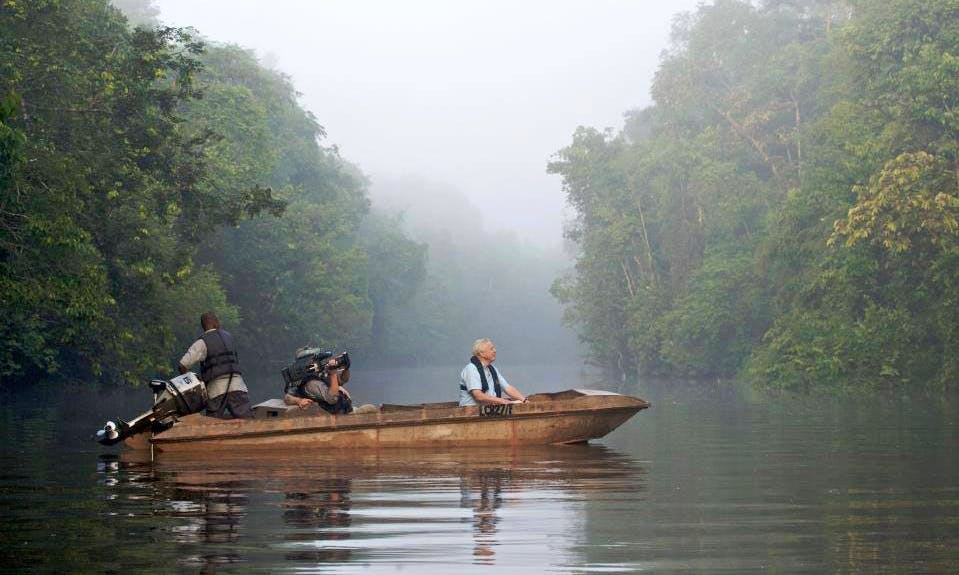 Experience Memorable Wildlife Tours on Sukau Rainforest Lodge