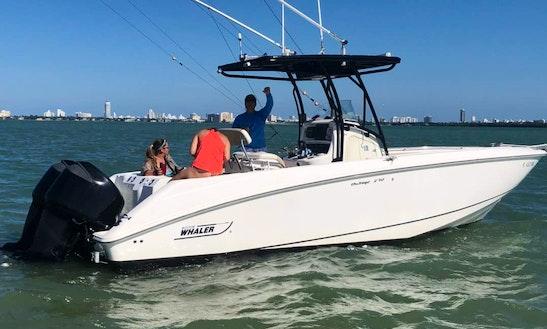 Beautiful Boston Whaler With Captain - Miami