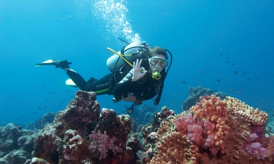 Experience Scuba Diving In Strovolos, Cyprus