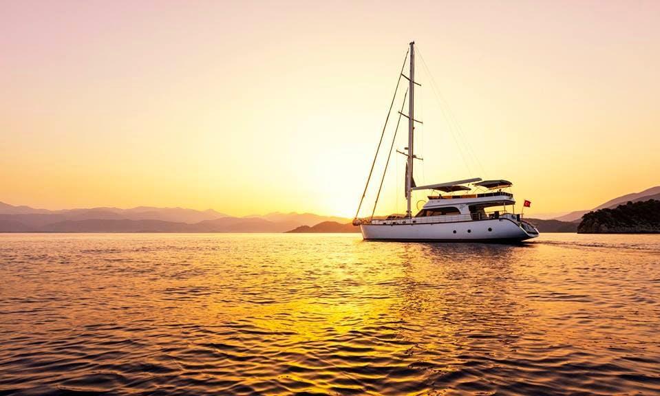 Perdue Motor Sailer Charter