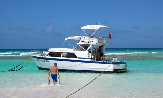 Have An Amazing Diving Experience In Saint Joseph, Barbados