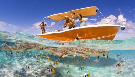 'hermès Ii', Luxury Speed Boat, Private Excursions & Water Lunch In Bora Bora