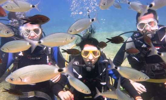 Experience Under Water Scuba Diving In Antalya, Turkey