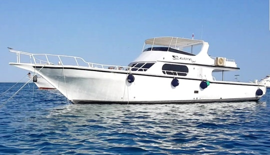 Explore The Red Sea With 6 Friends On A Trip Of A Lifetime