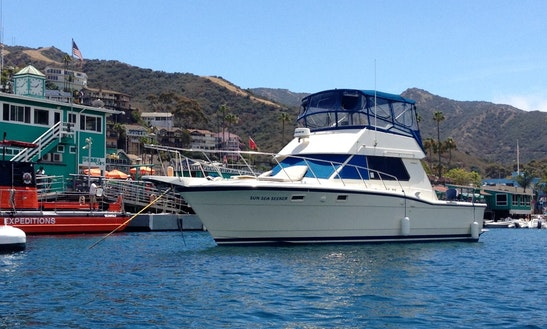 Charter A Hatteras In Dana Point And Ride The Waves In Style