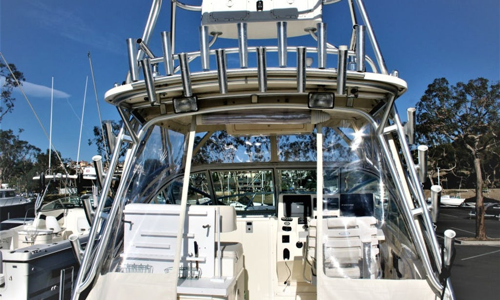 Charter This Well Equipped Albemarle In Dana Point