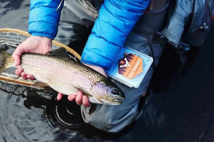 Fishing on Lake Mead