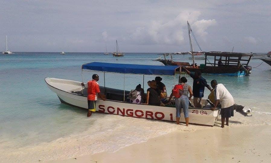 Have an amazing diving experience in Zanzibar, Tanzania
