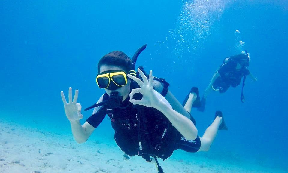 Explore And Enjoy Scuba Diving Trips in San Juan, Puerto Rico