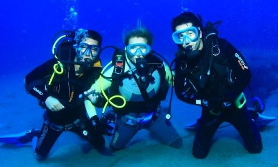 Have An Amazing Diving Experience In Pwani Mchangani, Zanzibar