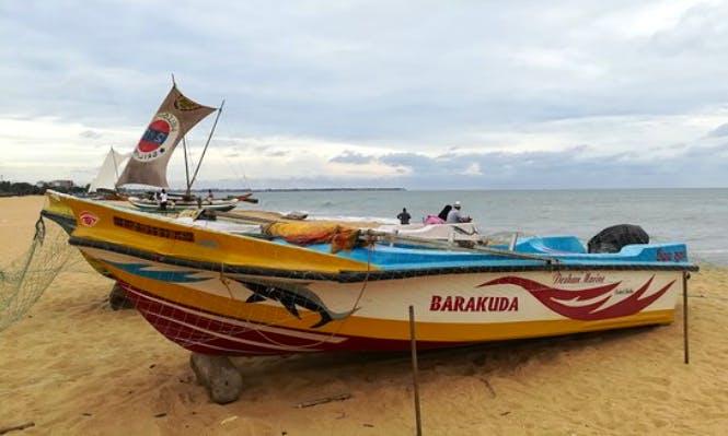 Enjoy Whale Watching Experience in Galewela, Sri Lanka