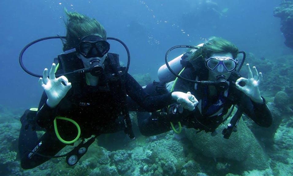 Have a Wonderful diving experience in Zanzibar, Tanzania