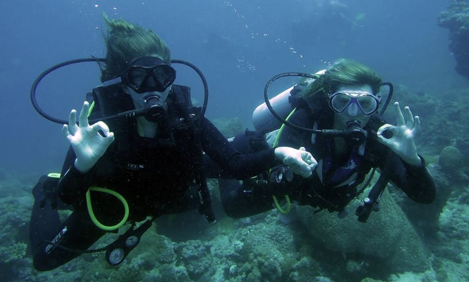 Have a Wonderful diving experience in Zanzibar, Tanzania