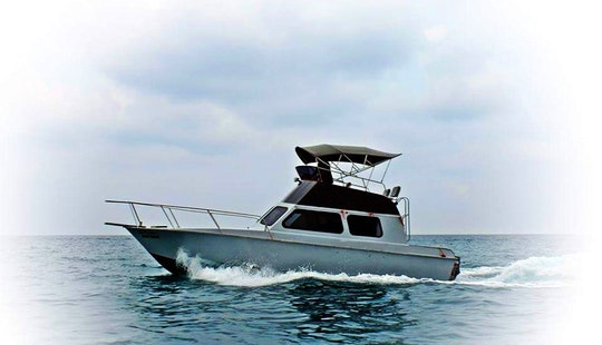 Luxury Dive Trips And Scuba Diving Lesson By Speedboat In Koh Tao, Thailand