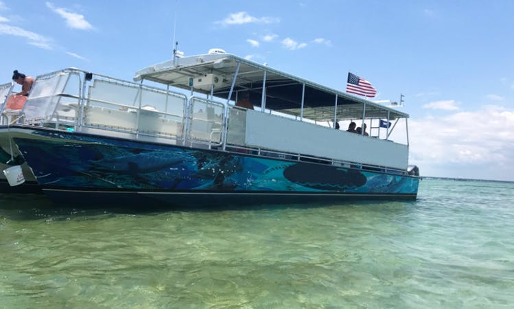 Private Crab Island Excursions and Dolphin Tour in Destin, FL